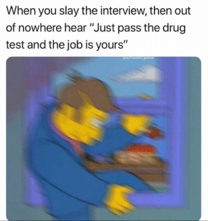 """Funny, Test, and The Interview: When you slay the interview, then out  of nowhere hear """"Just pass the drug  test and the job is yours""""  Mi 20+ Funny Photos for Your Thursday #humor"""
