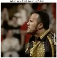 Memes, Smell, and Weed: When You Smell Weed In Public - DM This To A Friend😂 Follow 👉 @stonerjoke
