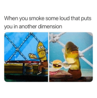 Hello, Memes, and 🤖: When you smoke some loud that puts  you in another dimension Hello I come in piece