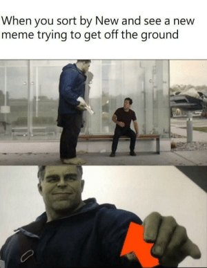 awesomesthesia:  : ): When you sort by New and see a new  meme trying to get off the ground awesomesthesia:  : )