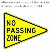 Facts, Memes, and Party: When you spark up a blunt at a party and  all random people show up to hit it  NO  PASSING  ZONE This is facts! 🤨😂💯 WSHH