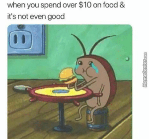 Dank, Food, and Memes: when you spend over $10 on food &  it's not even good meirl by rollingJackey FOLLOW HERE 4 MORE MEMES.