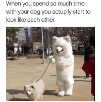 Memes, Time, and 🤖: When you spend so much time  with your dog you actually start to  look like each other  @dabmoms Same 😂