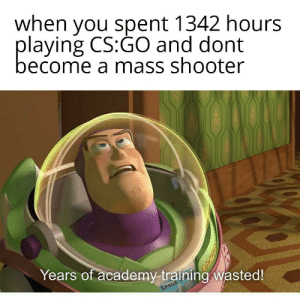 what the media would say: when you spent 1342 hours  playing CS:GO and dont  become a mass shooter  Years of academy training wasted!  SPRCE what the media would say