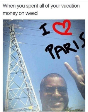 Money, Weed, and Vacation: When you spent all of your vacation  money on weed  1112 me irl