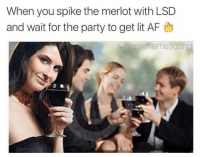 Memes, 🤖, and Art: When you spike the merlot with LSD  and wait for the party to get lit AF  Gdankmemesgang  Carmac art Snapchat : dankmemesgang