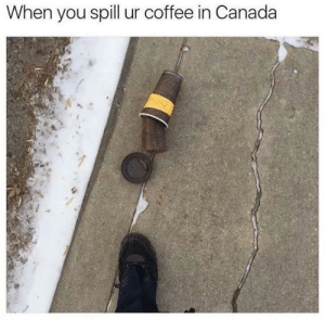 Happened to me too by Paladin_Pure MORE MEMES: When you spill ur coffee in Canada Happened to me too by Paladin_Pure MORE MEMES