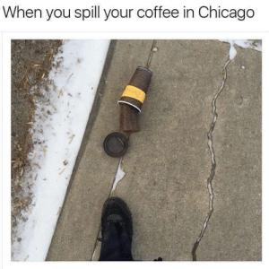 5 second rule!: When you spill your coffee in Chicago 5 second rule!