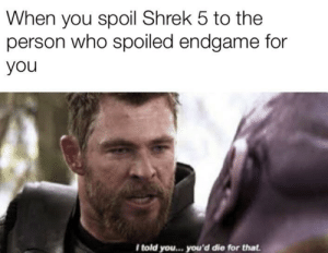Infinity war meme: When you spoil Shrek 5 to the  person who spoiled endgame for  you  I told you... you'd die for that Infinity war meme