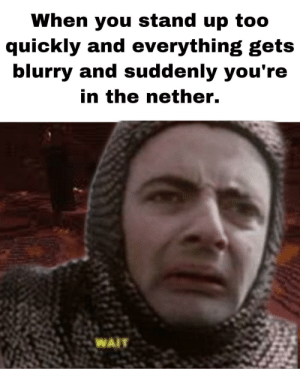 Enter ze quantum realm: When you stand up to0  quickly and everything gets  blurry and suddenly you're  in the nether.  WAIT Enter ze quantum realm