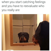 wooflife: when you start catching feelings  and you have to reevaluate who  you really are wooflife