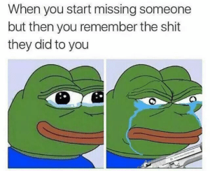missing someone: When you start missing someone  but then you remember the shit  they did to you