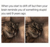 """Tumblr, Blog, and Brain: When you start to drift off but then your  brain reminds you of something stupid  you said 9 years ago. <p><a href=""""http://memehumor.net/post/175436068422/its-all-coming-back"""" class=""""tumblr_blog"""">memehumor</a>:</p>  <blockquote><p>It's all coming back…</p></blockquote>"""