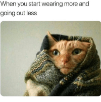 Memes, Tis the Season, and 🤖: When you start wearing more and  going out less Tis the season Become BVIP
