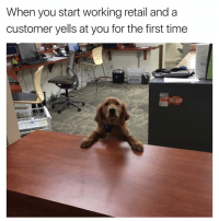 😂😂😂 | More 👉 @miinute: When you start working retail and a  customer yells at you for the first time 😂😂😂 | More 👉 @miinute
