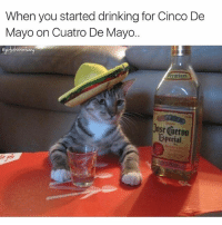 Drinking, Funny, and Getting Turnt: When you started drinking for Cinco De  Mayo on Cuatro De Mayo..  eumiu  Jose Cuervo  special flashbackfriday to this lil guy getting turnt🙌🏻😹 cincodemayo girlsthinkimfunnytwitter