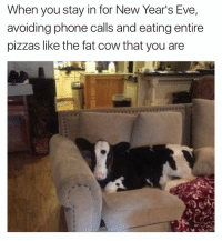 Funny, New Year's, and Pizza: When you stay in for New Year's Eve,  avoiding phone calls and eating entire  pizzas like the fat cow that you are This is literally exactly what I'll be doing