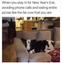 Funny, Pizza, and Eve: When you stay in for New Year's Eve,  avoiding phone calls and eating entire  pizzas like the fat cow that you are Me last night | More 👉 @miinute