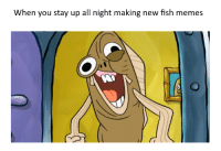 Fred_IRL: When you stay up all night making new fish memes Fred_IRL
