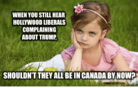 hollywood: WHEN YOU STILL HEAR  HOLLYWOOD LIBERALS  COMPLAINING  ABOUT TRUMP  SHOULDNT THEY ALL BEIN CANADA BY NOWP
