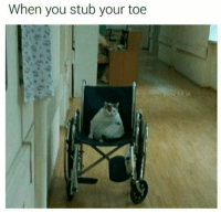 You, Toe, and Stub: When you stub your toe