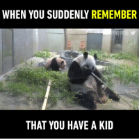 Funny, Panda, and Mom: WHEN YOU SUDDENLY REMEMBER  THAT YOU HAVE A KID panda mom as like a kid