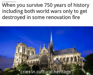 Thats a big F for history: When you survive 750 years of history  including both world wars only to get  destroyed in some renovation fire  eriesin cultural heritage* Thats a big F for history