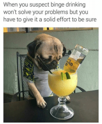 Drinking, Humans of Tumblr, and Solid: When you suspect binge drinking  won't solve your problems but you  have to give it a solid effort to be sure