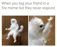 The most relatable meme about memes out there: When you tag your friend in a  fire meme but they never respond The most relatable meme about memes out there
