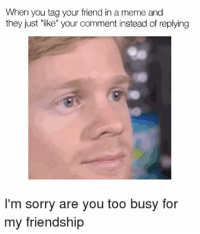 """Like The Meme Train for more!: When you tag your friend in a meme and  they just """"like"""" your comment instead of replying  I'm sorry are you too busy for  my friendship Like The Meme Train for more!"""