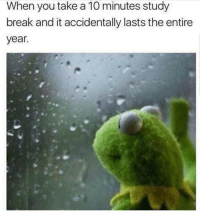 Break, MeIRL, and You: When you take a 10 minutes study  break and it accidentally lasts the entire  year meirl