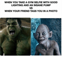 Friends, Gym, and Memes: WHEN YOU TAKE A GYM SELFIE WITH GOOD  LIGHTING AND AN INSANE PUMP  VS  WHEN YOUR FRIEND TAGS YOU IN A PHOTO  kingborch WHY IS THIS SO TRUE??!!?!?!