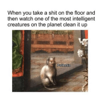 Shit, Watch, and Classical Art: When you take a shit on the floor and  then watch one of the most intelligent  creatures on the planet clean it up  Pathetic Pathetic