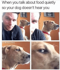 Stingy ass 😂 . . Follow @hoedity (me) for more 💣💥: When you talk about food quietly  so your dog doesn't hear you  IG: @fvckyourmeme Stingy ass 😂 . . Follow @hoedity (me) for more 💣💥