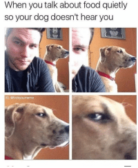 Memes, 🤖, and Noise: When you talk about food quietly  so your dog doesn't hear you  IG: @fvckyourmeme pretty sure he just made the noise for 🥓 bacon (follow @fvckyoumeme follow follow follow)