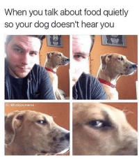 Bitch, Food, and Funny: When you talk about food quietly  so your dog doesn't hear you  G: @fvckyouneme Oh I hear you. And I'm gonna eat those chips and soon as you put that bowl back down bitch 😂 (rp: @fvckyoumeme @fvckyoumeme)