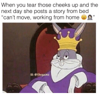 "Memes, 🤖, and Working: When you tear those cheeks up and the  next day she posts a story from bed  ""can't move, working from hom  C0  IG: @thegainz 😎"