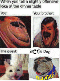 Dish, Dog, and Brother: When you tell a slightly offensive  joke at the dinner ble  You  Your brother  The guest:  dish Dog 🅱️JÄRK 🅱️JÄRK