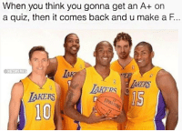 That about sums it up. ... lakers losangeles la kobe steve nash dwight howard world peace pau gasol nba meme memes funny basketball quiz test a F nbamemes: When you think you gonna get an A+ on  a quiz, then it comes back and u make a F.  @NBAMEMES  BAKERS That about sums it up. ... lakers losangeles la kobe steve nash dwight howard world peace pau gasol nba meme memes funny basketball quiz test a F nbamemes