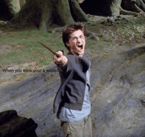 Funny Harry Potter meme like for more: When you think your a wizard Funny Harry Potter meme like for more