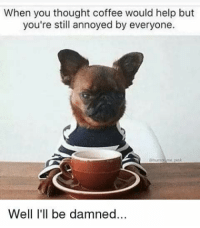 Lol, Coffee, and Help: When you thought coffee would help but  you're still annoyed by everyone.  ehumorme.pin  Well I'll be damned... It takes at least 2 cups for me