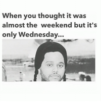 Its Only Wednesday: When you thought it was  almost the weekend but it's  only Wednesday.