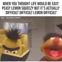 Life, Memes, and Sesame Street: WHEN YOU THOUGHT LIFE WOULD BE EASY  PEASY LEMON SQUEEZY BUT IT'S ACTUALLY  DIFFICULT DIFFICULT LEMON DIFFICULT  PBS -SESAME STREET Actually difficult difficult lemon difficult @sesamestreet memesapp