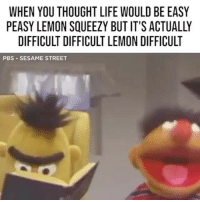 Life, Memes, and Sesame Street: WHEN YOU THOUGHT LIFE WOULD BE EASY  PEASY LEMON SQUEEZY BUT IT'S ACTUALLY  DIFFICULT DIFFICULT LEMON DIFFICULT  PBS SESAME STREET Why didn't anyone ever tell me this 😂
