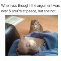 Funny, Memes, and Peace: When you thought the argument was  over & you're at peace, but she not SarcasmOnly