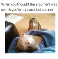 It's showtime!! Follow @thepettybitch @thepettybitch @thepettybitch @thepettybitch: When you thought the argument was  over & you're at peace, but she not It's showtime!! Follow @thepettybitch @thepettybitch @thepettybitch @thepettybitch