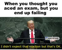 You Thought: When you thought you  aced an exam, but yoiu  end up failing  KAPWING  I didn't expect that reaction but that's OK.