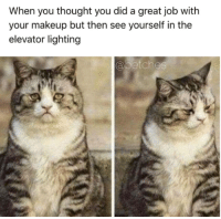 Dank, Makeup, and Jobs: When you thought you did a great job with  your makeup but then see yourself in the  elevator lighting  a botches Wrong on so many levels.