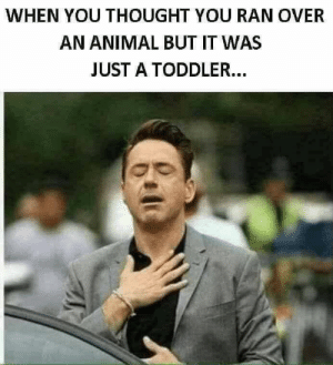 Animal, Thought, and You: WHEN YOU THOUGHT YOU RAN OVER  AN ANIMAL BUT IT WAS  JUST A TODDLER...