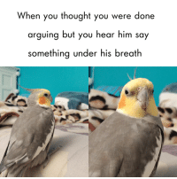 Thought, Him, and You: When you thought you were done  arguing but you hear him say  something under his breath oh peck